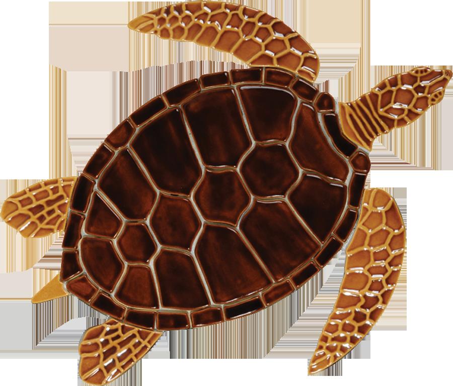 GT7B  Brown Sea Turtle copy.png