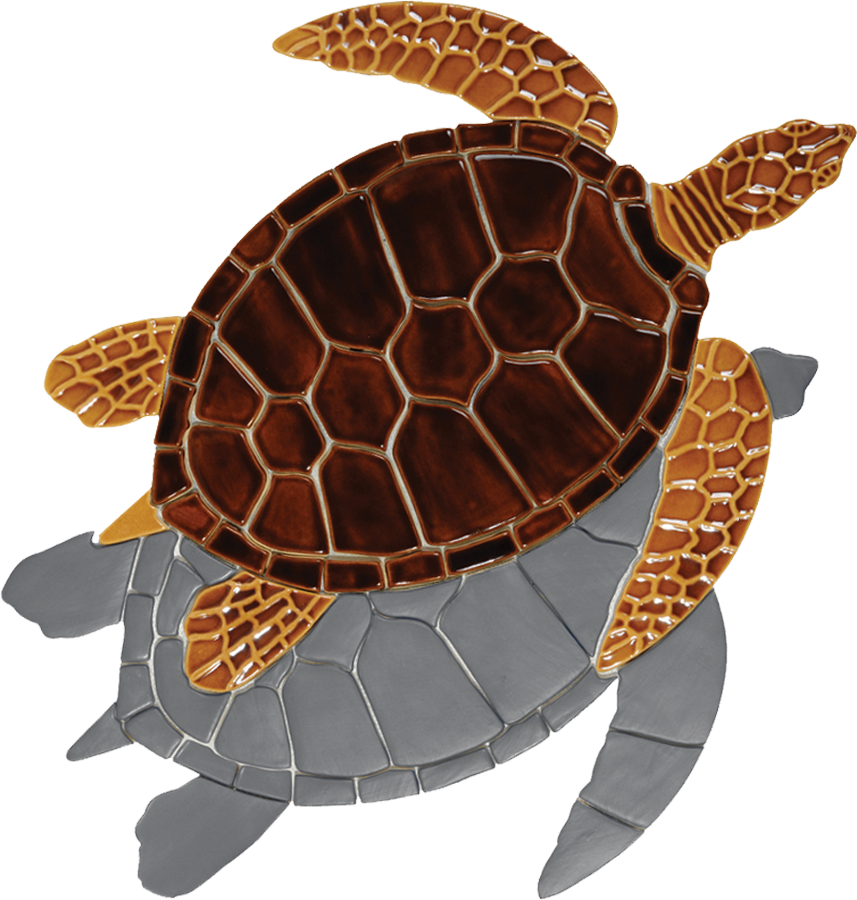 GT7B Brown Sea Turtle (with shadow) copy.png