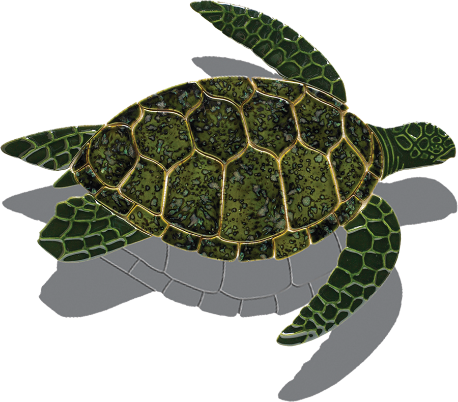 T49-SH Turtle Side View (with shadow) copy.png