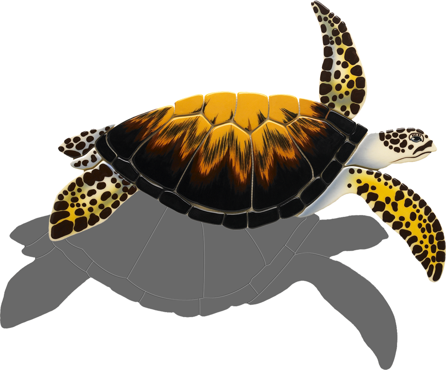 LT8  Loggerhead Turtle (with shadow) copy.png