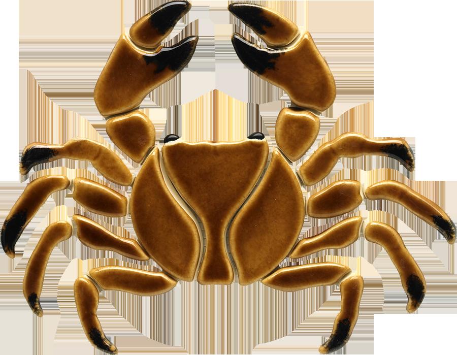 BR32 Brown Crab copy.png