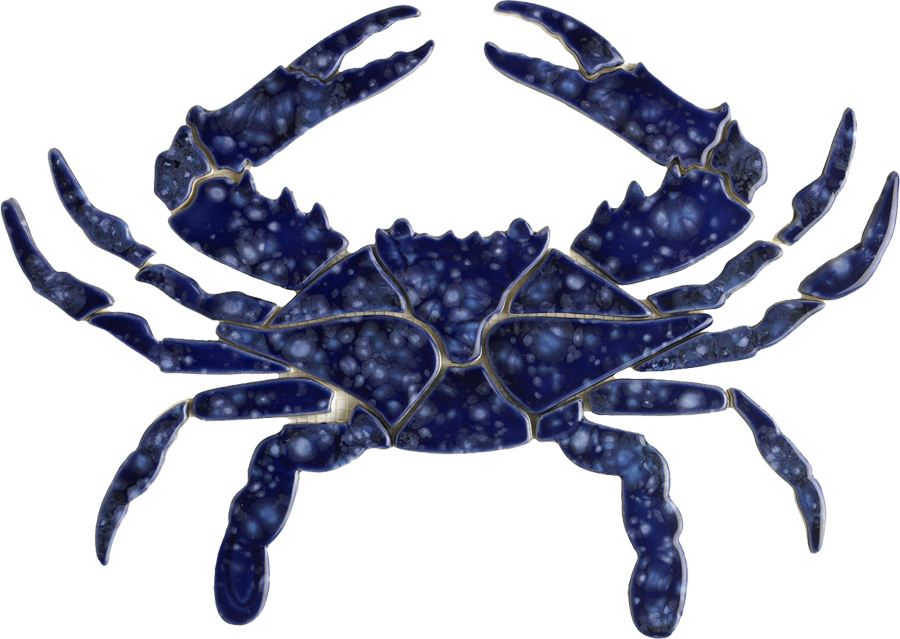 BC34  Blue Crab copy.png