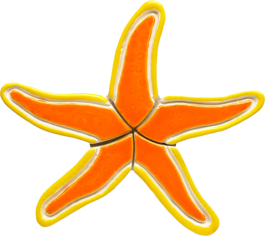 OS36  Orange Starfish copy.png