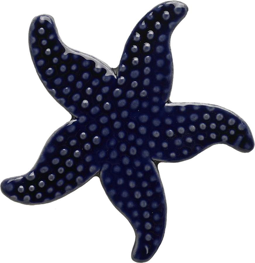 102RB  Royal Blue Starfish copy.png