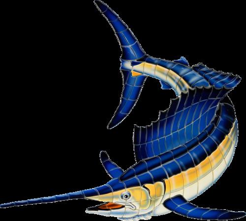 Sailfish (Reverse)