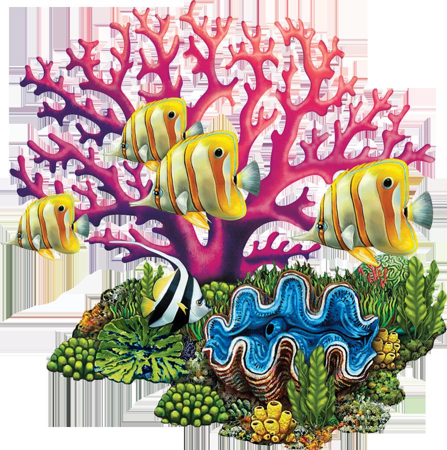 PORC-CR82  Coral Reef copy.png
