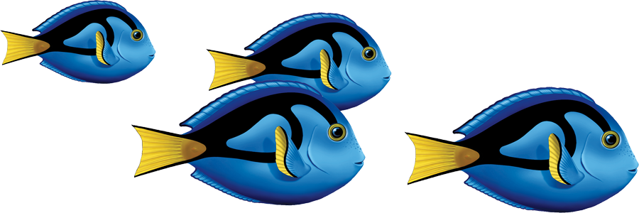 Blue Tang Group.png