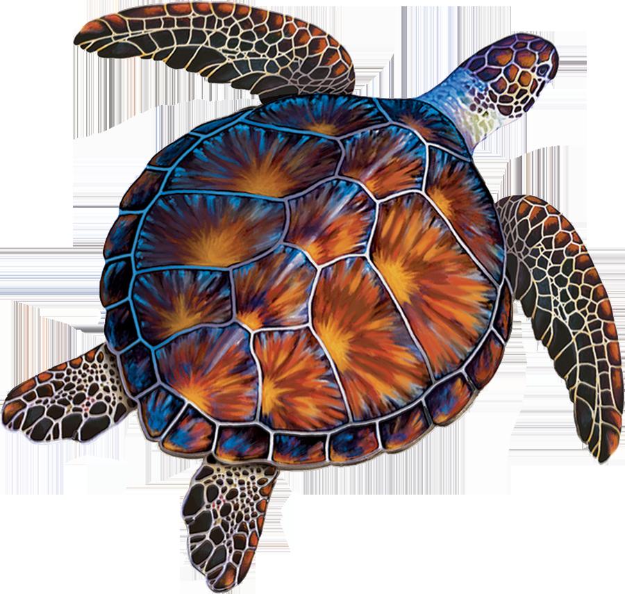 PORC-BT10  Brown Turtle copy.png