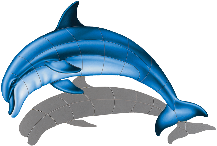 PORC-BD1-SH Bottlenose Dolphin (with shadow) copy.png