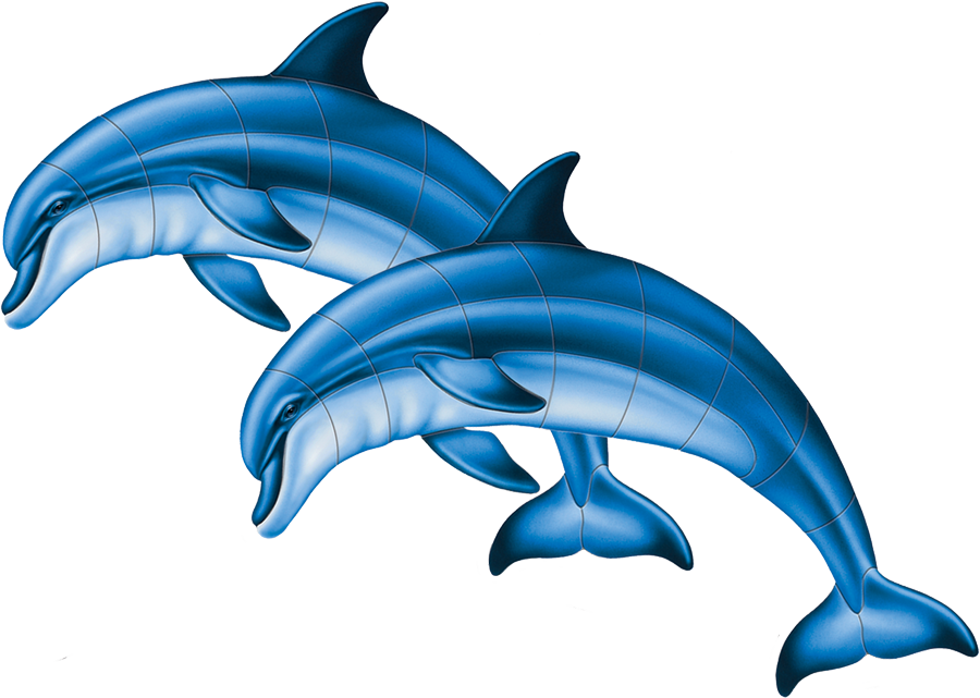 PORC-BD1D  Bottlenose Dolphin (double) copy.png