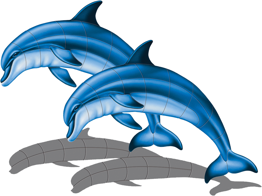 PORC-BD1D-SH Bottlenose Dolphin (double with shadow) copy.png