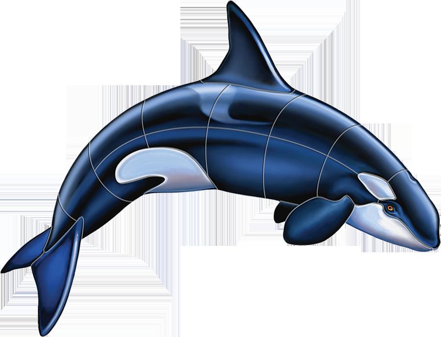 PORC-OR52  Orca-A copy.png