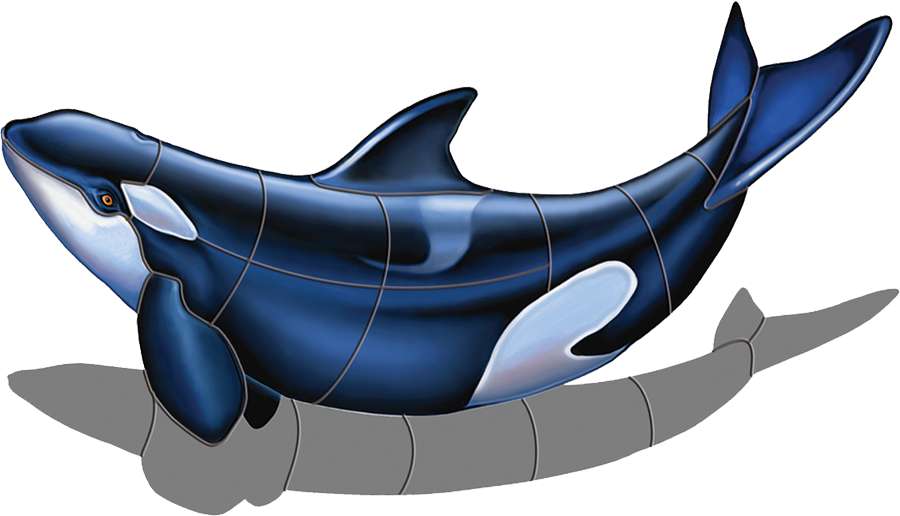 PORC-OR53-SH  Orca-B (with shadow) copy.png