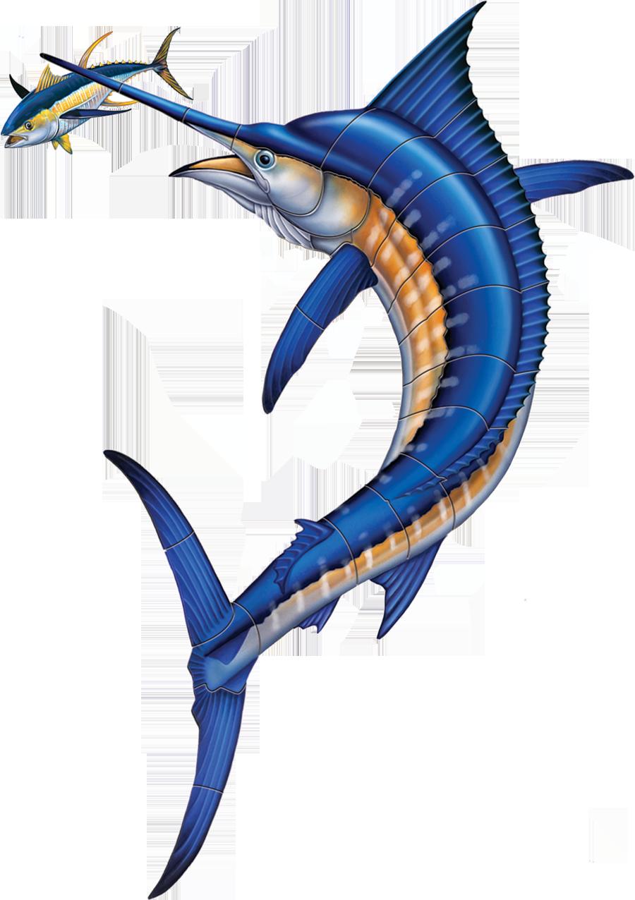 PORC-MA44 Marlin with Tuna PORC-TN43R copy.png