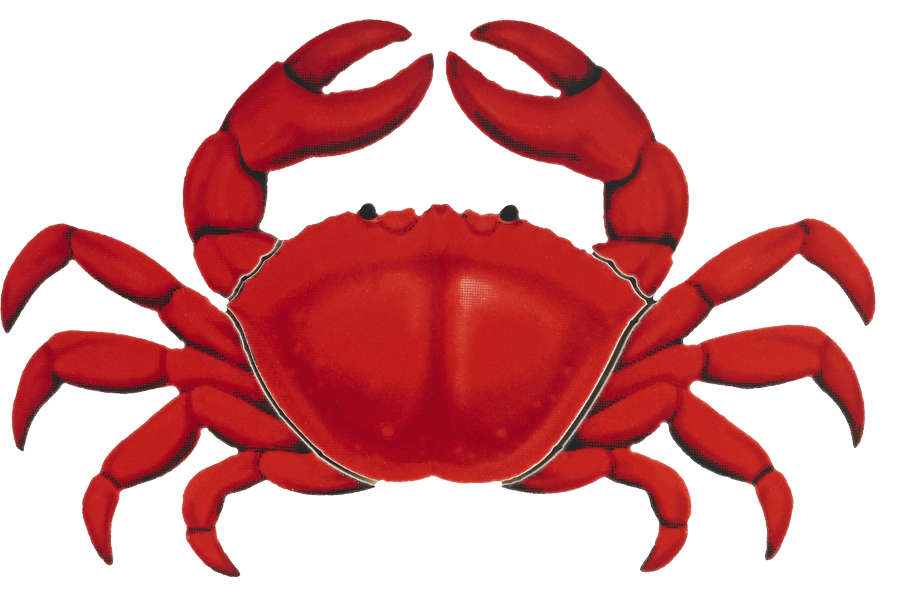 PORC-RC11  Red Crab copy.png