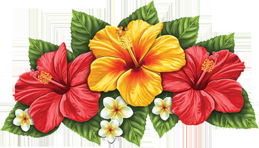 PORC-TH55  Hibiscus Flower (triple) copy.png