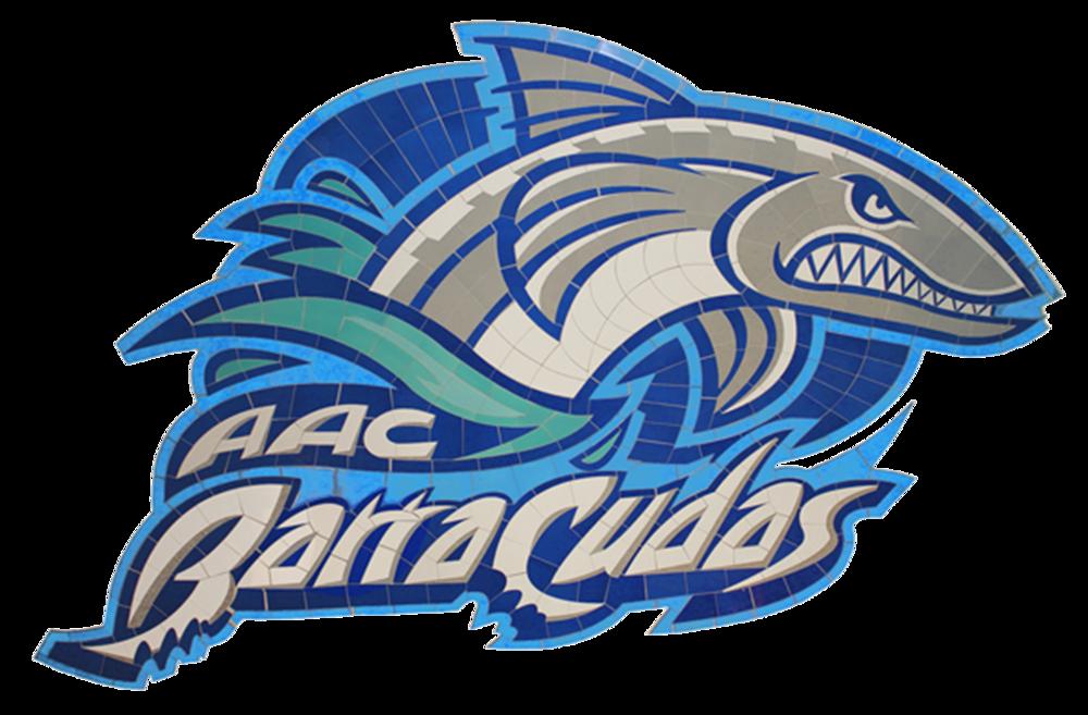 Barracudas.png