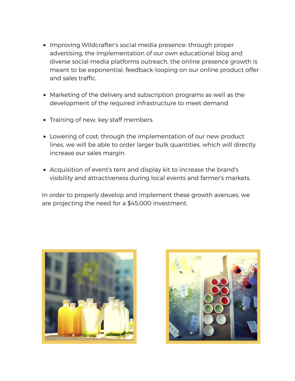 Business Plan-8.jpg