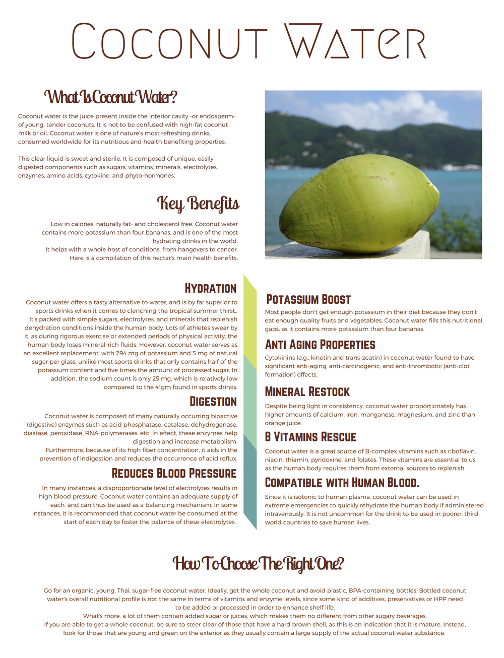 What is Coconut Water?-7.jpg