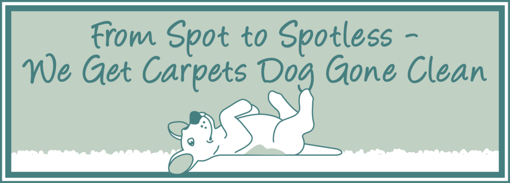 Dog-Gone-Clean-Carpet_From-Spot-to-Spotless