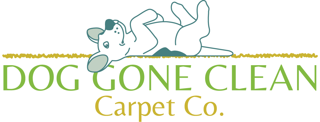 Eugene Carpet Cleaning | Dog Gone Clean Carpet Co.