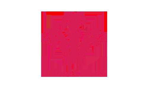 logos_0001_Prince's-trust.png