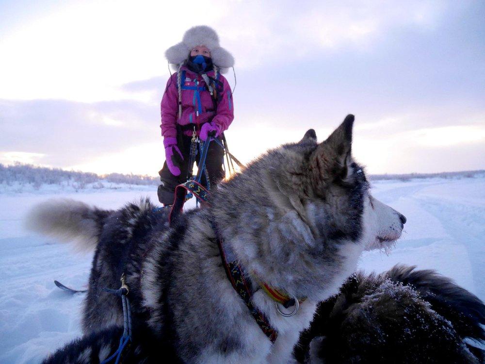 Snørekjøring på Finnmarksvidda i -25 er bare helt nydelig!