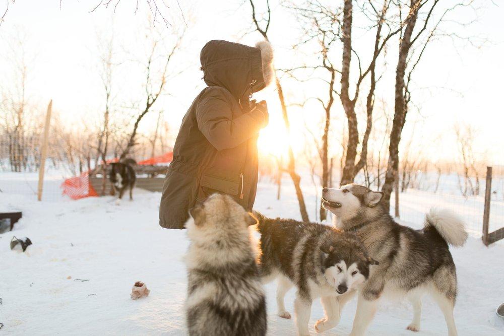 Livet som hundemamma er ikke så værst! Foto: Christina Gjertsen