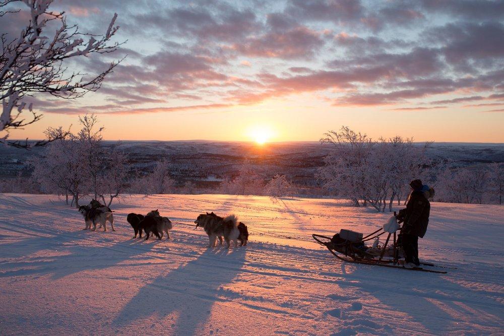 En fantastisk tid vi har her nordpå nå. Foto: Christina Gjertsen