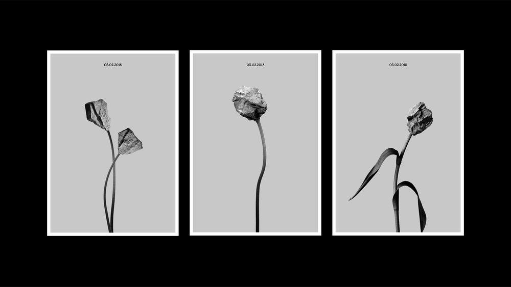 theflower-08.jpg