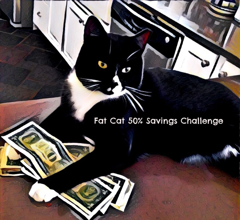 "FAT CAT 50% SAVINGS CHALLENGE  p1 stays lean to save you money. Because we are lean we are happy to take on any of the proverbial  ""Fat Cats"" out there.     Here is how our challenge works:   If you are currently using   Computer Science Corporation (CSC), Fiserv,     Ingenium, Policy Administration System (PAS),     Policy Management Systems Corporation (PMSC), RSG Reinsurance System  ,   SAP,     SICS- Reinsurance Management Solutions,     XyberNET   or   any other major provider   for your insurance related data management needs you are eligible for the challenge.   You send us your current contract, then our team will perform a full system review of your entire IT and data management system. These reviews have saved many companies significant sums of money by finding gaps in data, redundancy, under-appropriated reinsurance, and more. If you can not save 50% of what you are paying currently by switching to the p1 Service Line the results of the full system review are yours to keep for free. Simple, effective and will save you significant dollars regardless of the outcome!"