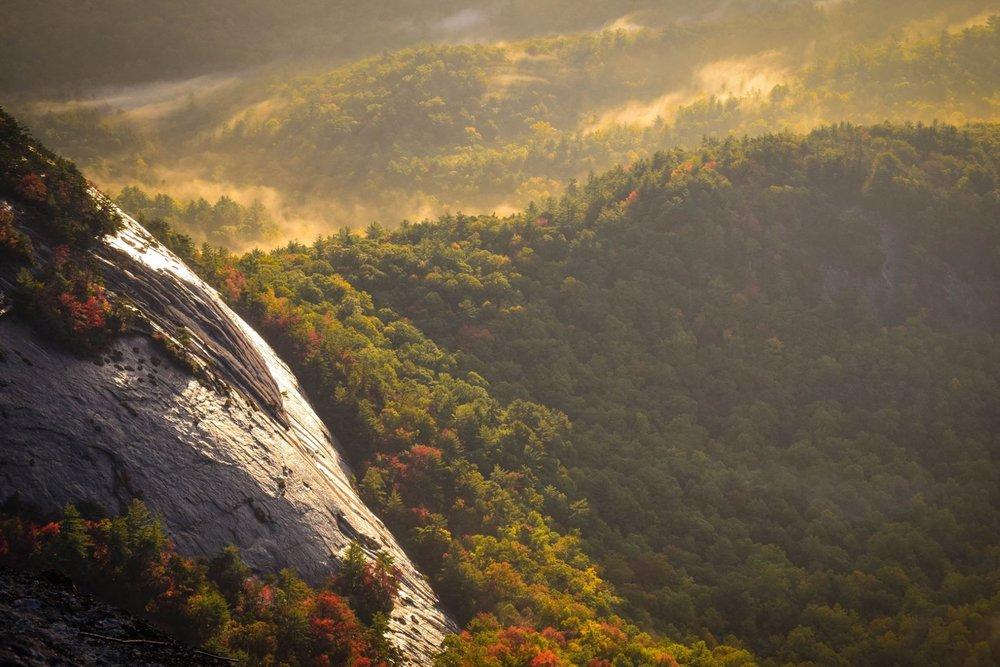 North Carolina - Landowner Resources