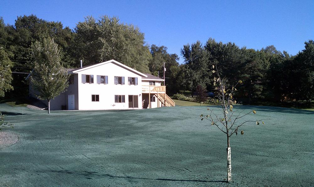 lawn seed sod 1.jpg