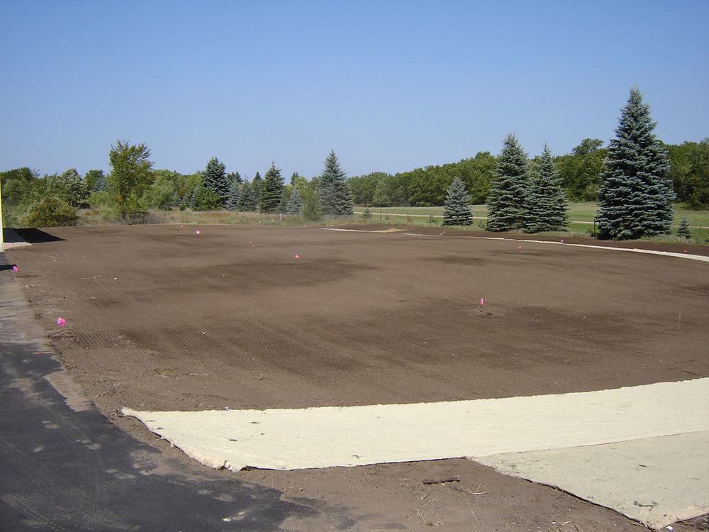 lawn seed sod 3.JPG