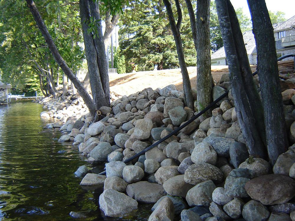 shoreline restoration 14.JPG