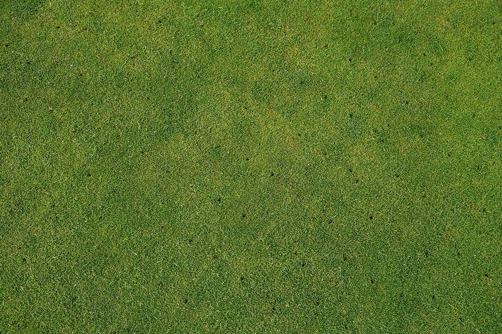 Core Aeration: The designated turf area will be aerated and cores will be returned to the lawn. Roots need air as well as water and nutrients for growth. Lawns that receive heavy use have restricted movement of air and water in the soil. This causes soil to compact. Aerating the soil can help prevent thatch. By improving the air-water-soil relationship, thatch decomposes faster. Microorganisms in the cores help to decompose the upper surface of the thatch as well.