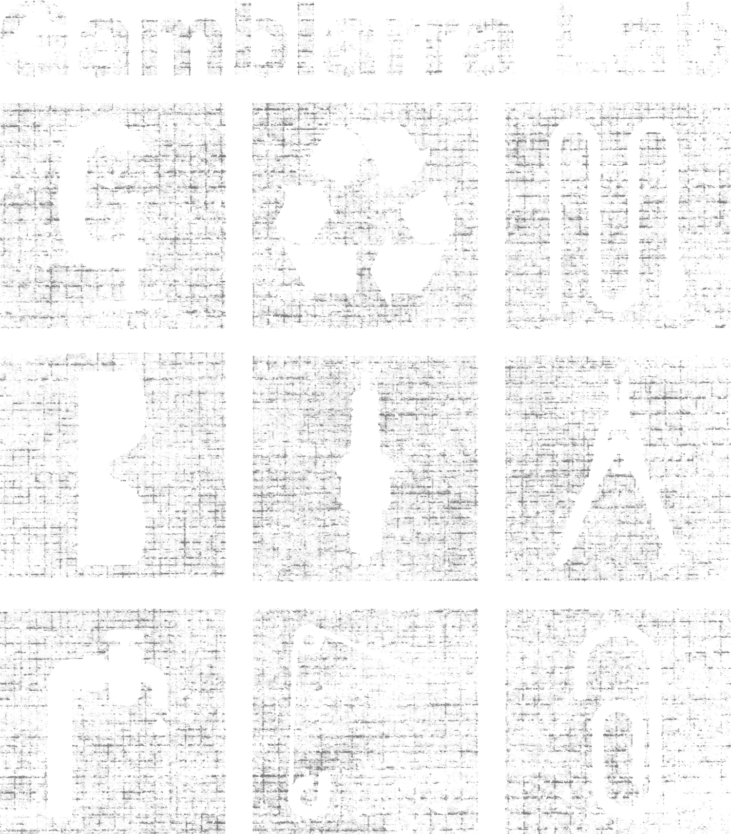 Gambiarra Lab
