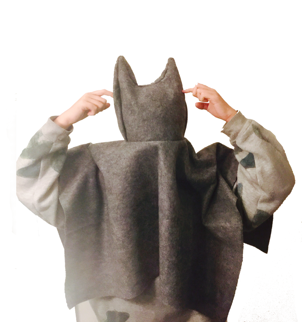 cat-head why.png