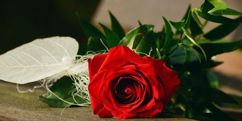 Happy Valentine's Day.jpg