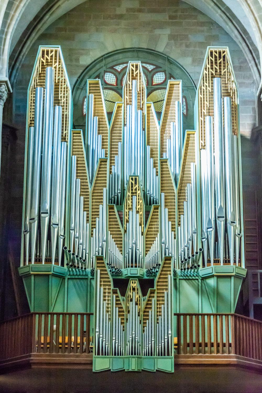 Organ-ic