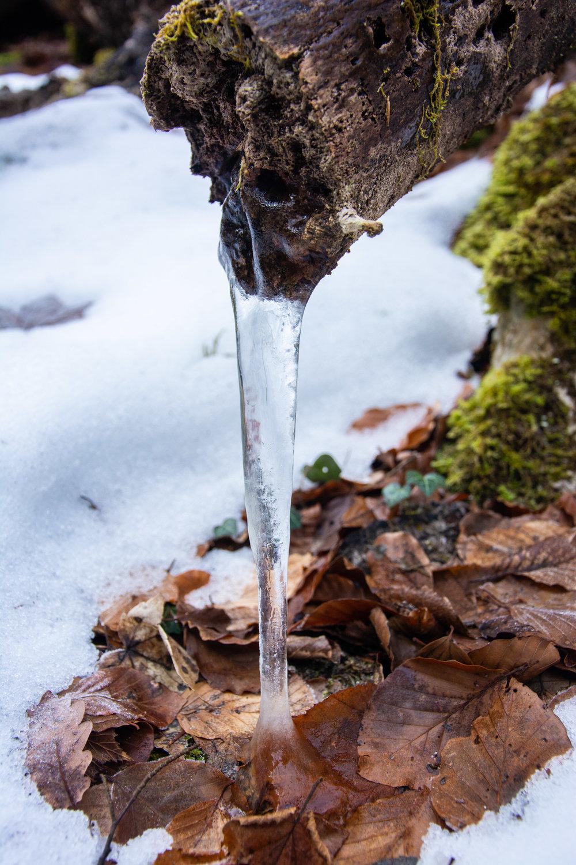 Stalagm-ice
