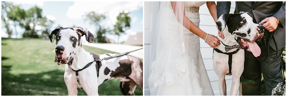 midwest lifestyle wedding photographers_0020.jpg