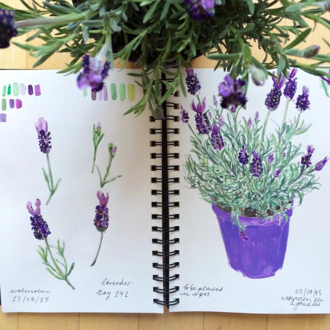 Sonia Brittain Art Lavender