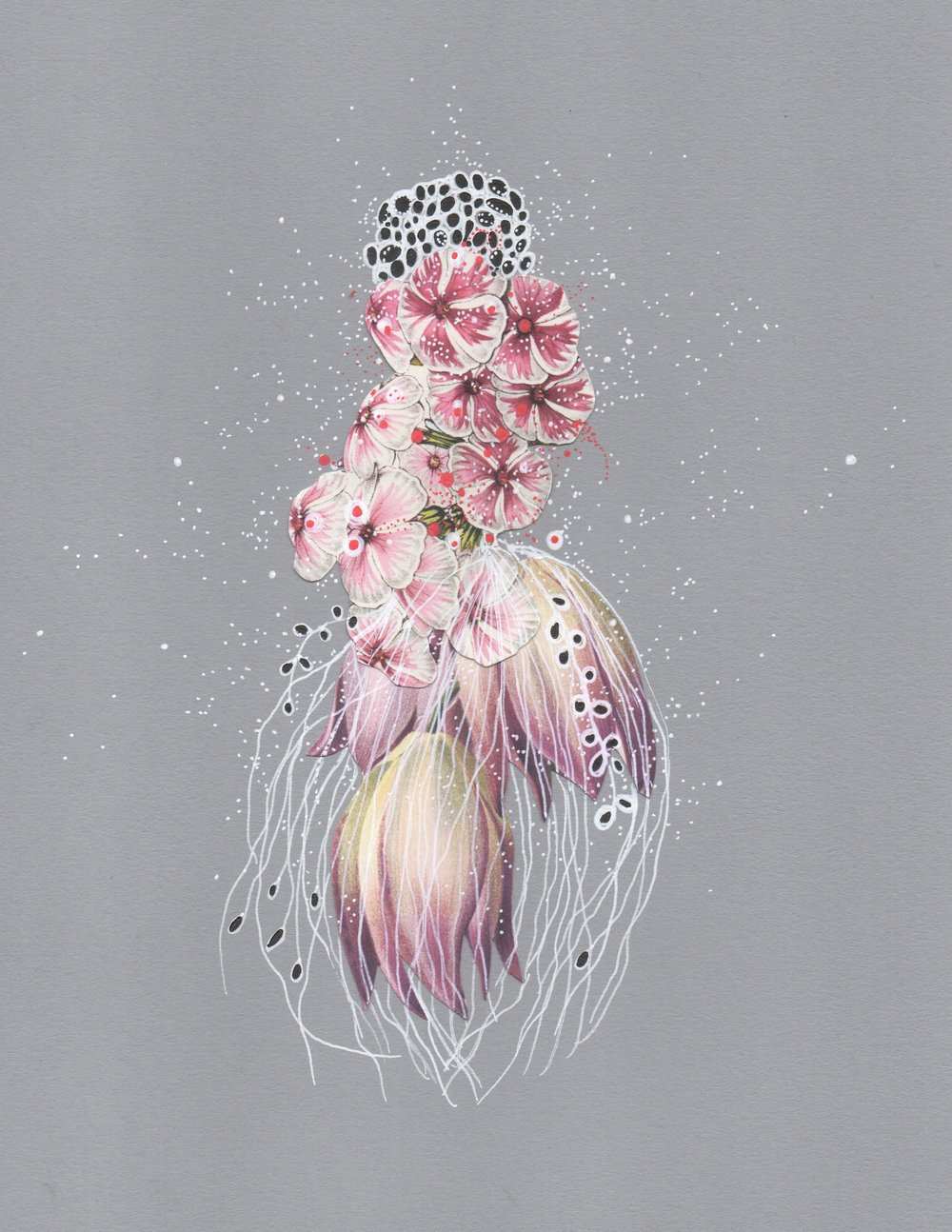 Snow Phlox Jellyfish, pen, ink & collage by Jenny Brown