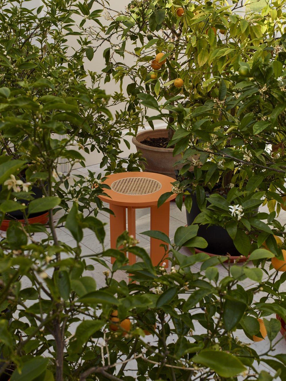 Side Stool Apricot Leaves Long190412_EJR34945.jpg