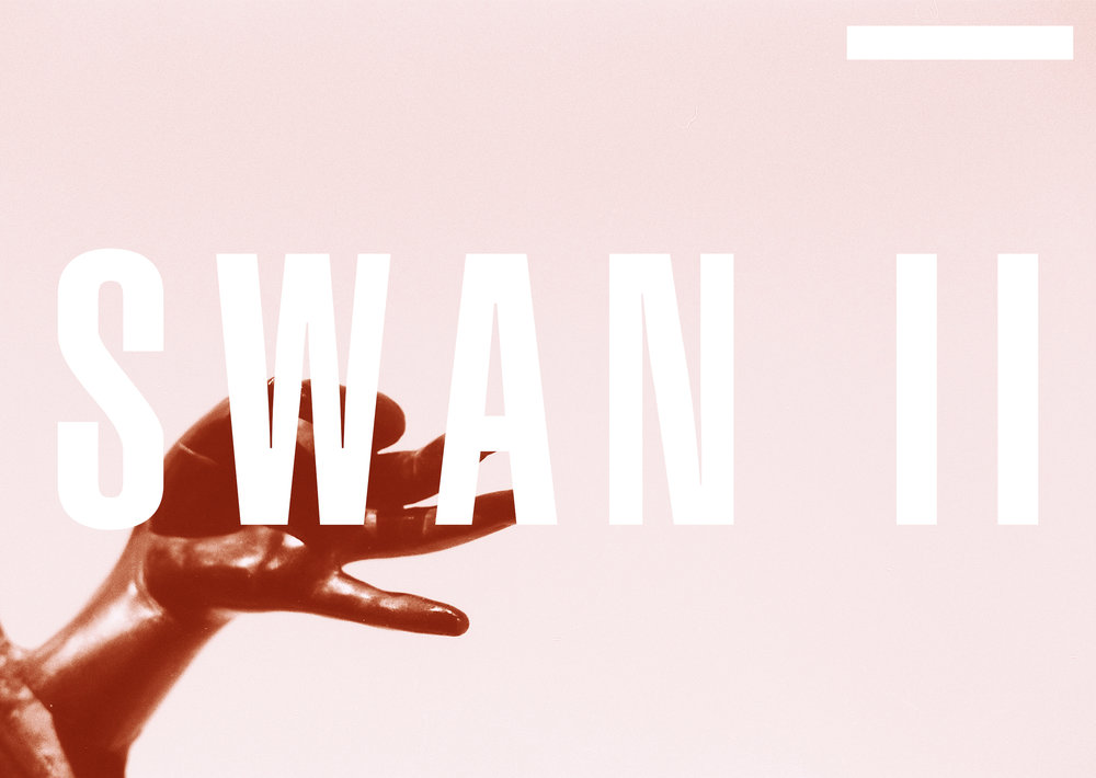NEW COLLECTION _ SWAN II  COMING SOON ...