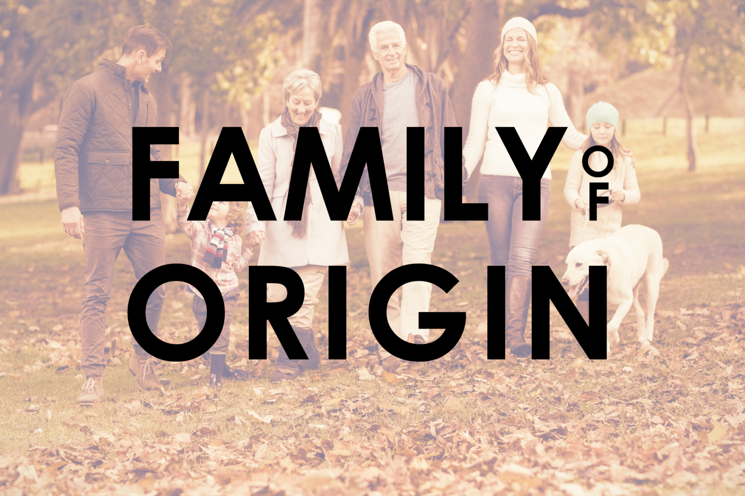 Family Of Origin Faith Based Great Marriages Family origin is the country from which the birth family came. great marriages