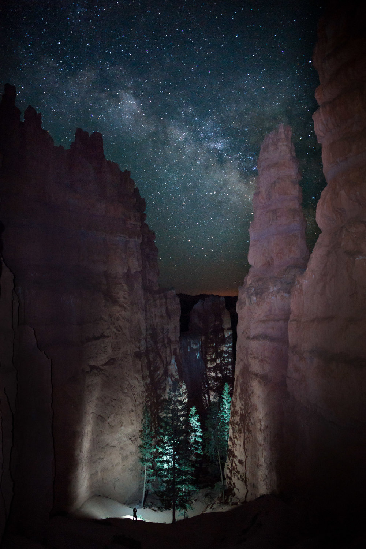 Exploring+the+Night.jpg