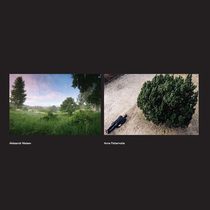 Book_Landscape1.jpg