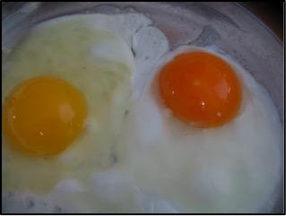 Right: organic egg/ Left: pasture-rasied egg